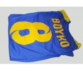 Футболка Joma CHAMPION V Ukraine 101264.709 Украина - пример с печатью лого