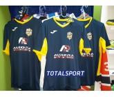 Футболка Joma CHAMPION IV 100683.109 ПРИМЕР с лого и номерами
