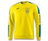 Реглан Joma Украина CHAMPION IV 100801.907 желтый