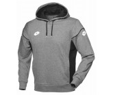 Реглан SWEAT STARS EVO FT HD (R9725) MELANG