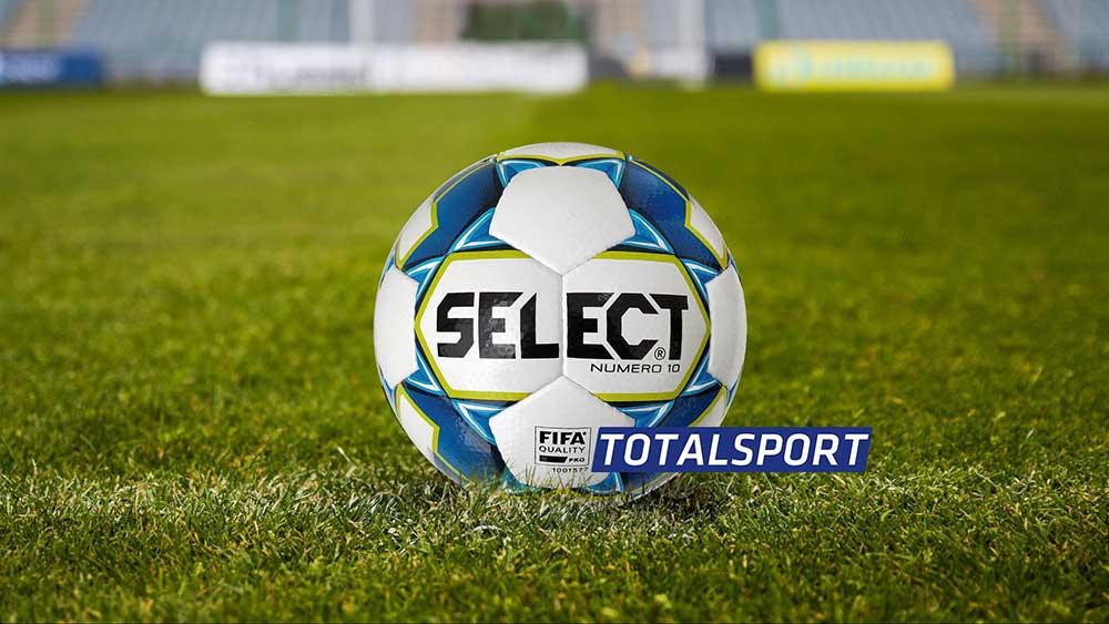 футбольный мяч Select Numero 10 IMS