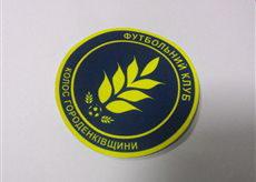 фото нанесения лого на футбольную форму