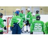 Пошив хоккейных свитеров