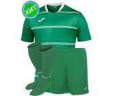 Комплект футбольной формы Joma STANDARD 100159.450(футболка+шорты+гетры)
