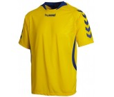 Футболка Hummel TEAM PLAYER MATCH JERSEY YELLOW/TRUE BLUE 03-552-5168