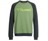 Реглан Hummel Classic Bee Crew зеленый 036-800-6358